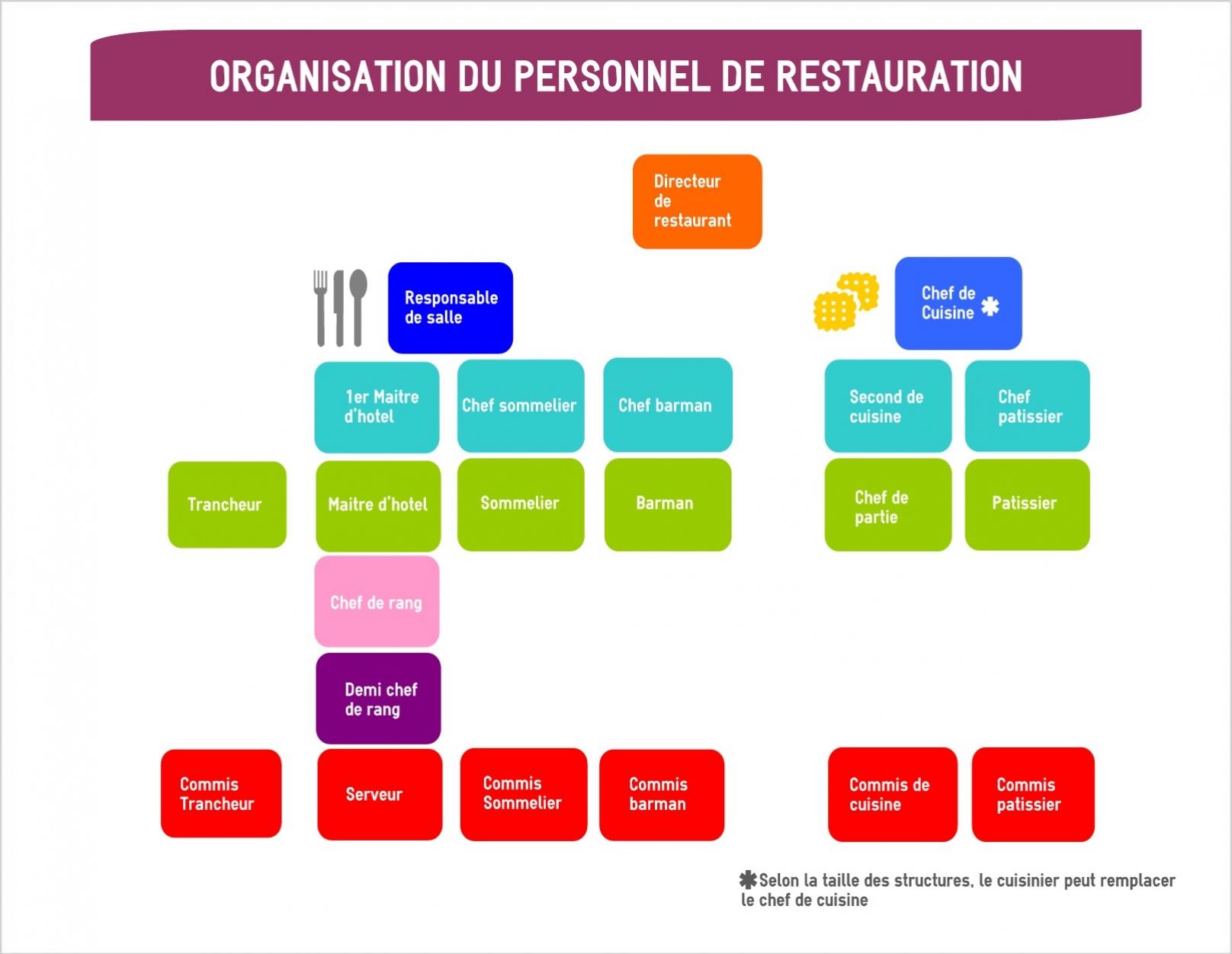 Organigramme d 39 un restaurant mon chef de cuisine for Emploi responsable de restauration collective